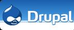 Hire Drupal CMS Developer